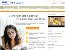 VCA Hospitals – Pet Diabetes